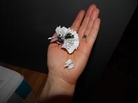 noahs origami